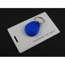 RFID Tag combo of Card and Keychain